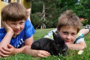 Lukas und Georg mit Hase